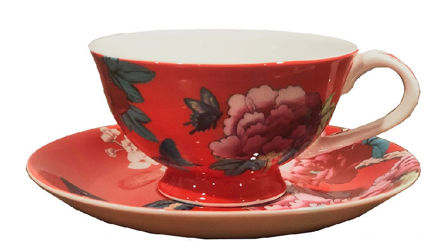 Tea Cup and Saucer in Watermelon Red colour